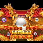 ทดลองเล่น Burning Pearl Bingo